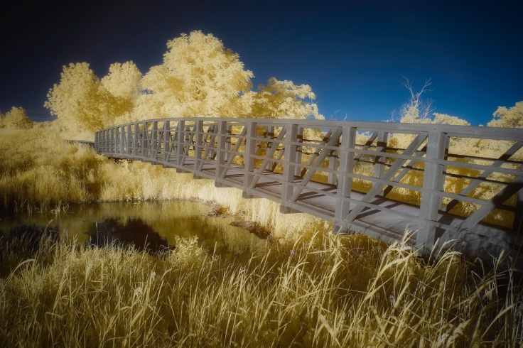 IMG_6181 Hidden Lake IR Deep Blue.jpeg