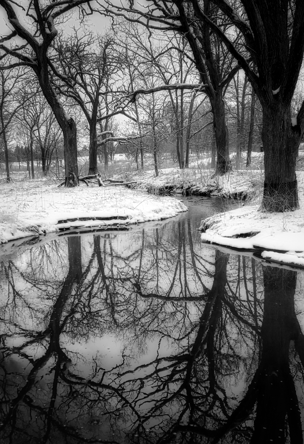 Colorless Reflections