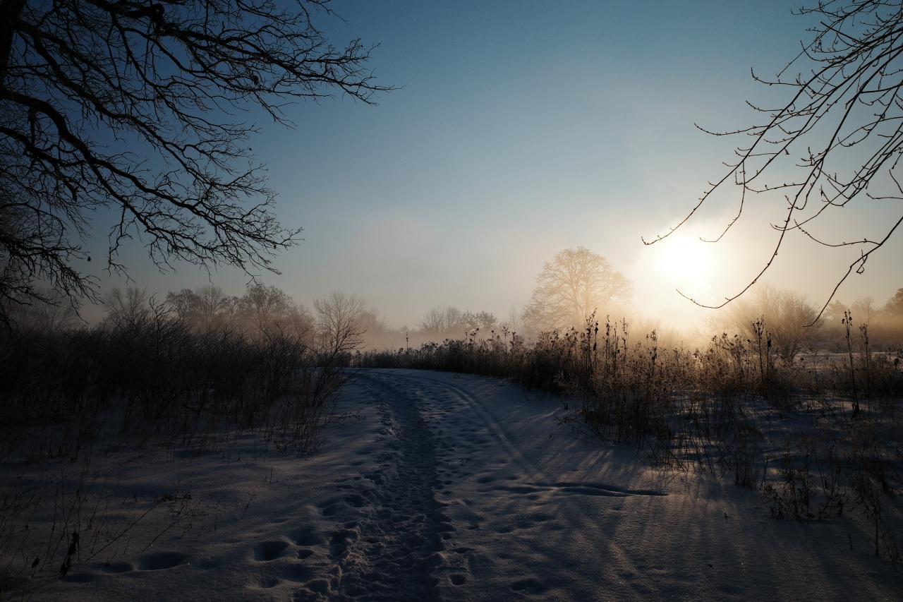 Icy Mist