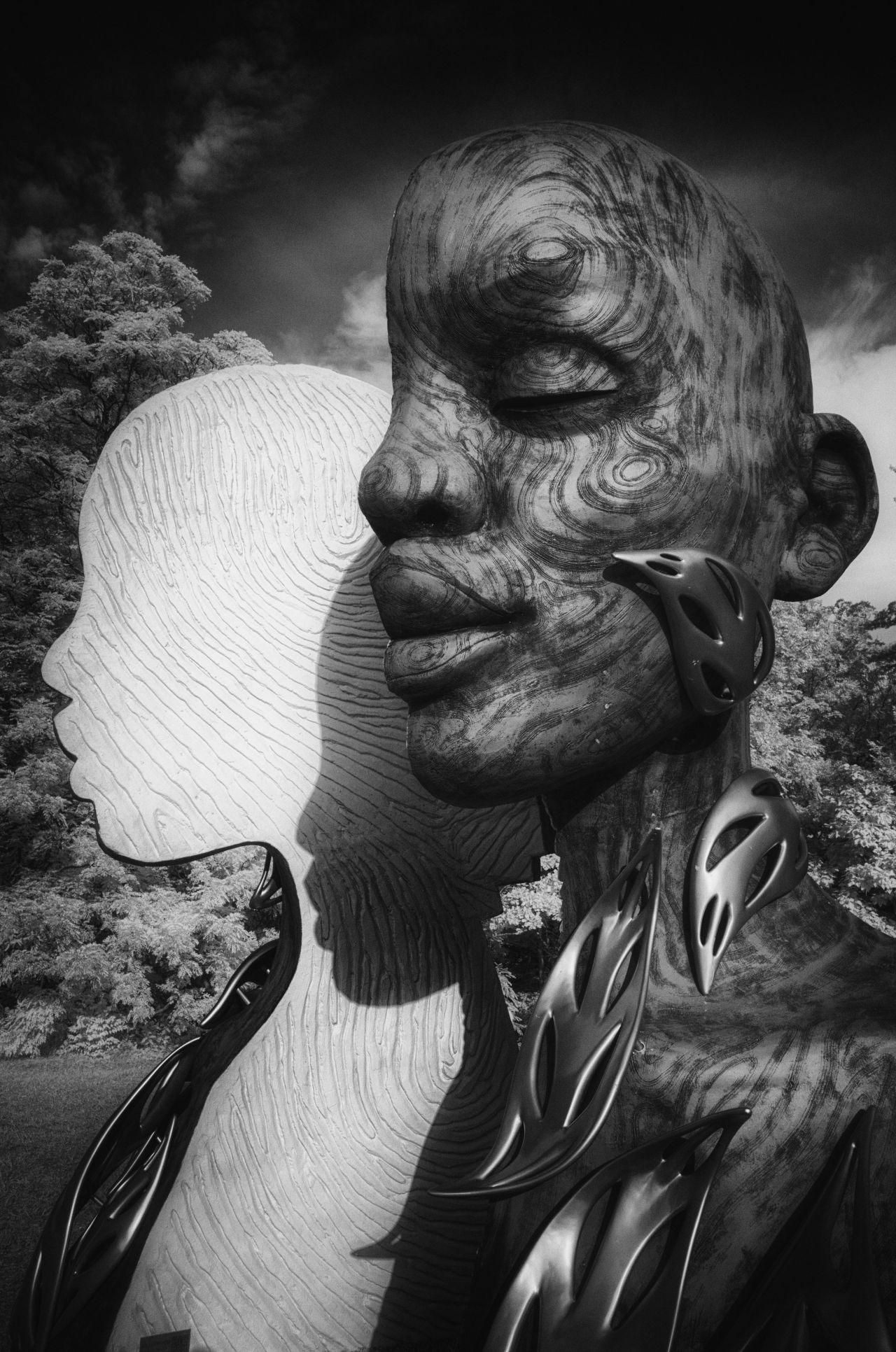 Human+Nature: Heartwood
